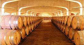 Visita Bodegas la Rioja