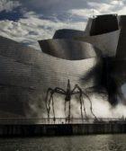 Museo Guggenheim fachada